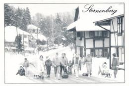 CPM GF  - B683 Et 684 -  68 - Sternenberg - Hivers Et Traditions ( Janvier 1991)-Envoi Gratuit - Other Municipalities