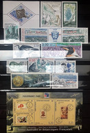 TAAF 1999, Poste N° 235/247 ; Bloc N° 3, Luxe, Timbres Et Bloc Magnifiques, Gomme D'origine, Sauf 248 à 259 - Komplette Jahrgänge