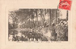92 Bois De Chaville Terrasse De L' étang De L' Ursine Peche Pecheur à La Ligne - Chaville