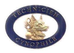 Militaria, INSIGNE DE GENDARMERIE, Brevet De Technicien Cynophile ,GMS 012 , Boussemart, Frais Fr 2.75e - Police