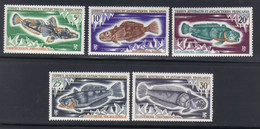 T.A.A.F Timbres Poissons Divers   5 Valeurs   N° 34 à 38** Neuf - Nuovi