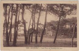 44  Quimiac  En  Mesquer  -  Les Pins En Bordure De Mer - Other Municipalities