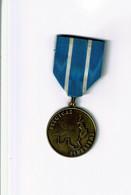 Malmedy, Eupen, Saint-Vith, Médaille De Résistant Au Nazisme 40/45, Ww2 (carte Avec Les Régions Annexées) - 1939-45