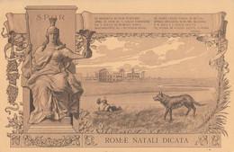 CARTOLINA VIAGGIATA ROMA CROCE ROSSA (HC1345 - Andere