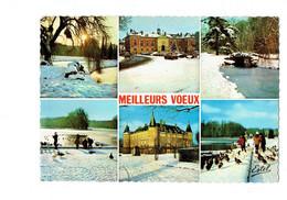 Cpm - 78 - Rambouillet -  - Meilleurs Voeux Neige Canard Voiture - Rambouillet (Château)
