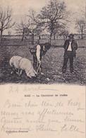 04 -- Riez -- Le Chercheur De Truffes -- Le Cochon Et 2 Paysans --- 3801 - Otros Municipios
