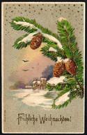 F0529 - Litho Lack Präge Glückwunschkarte Weihnachten - Winterlanschaft - M.S.i.B. - Zonder Classificatie