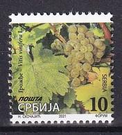SERBIA 2021,WINE,GRAPA,DEFINITIVE STAMP,VITIS WINIFERA,MNH - Serbia