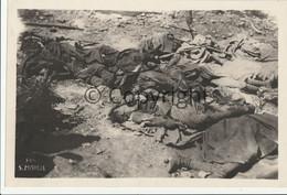FOTO Italia San Michele Vittime Dell'attacco Con Il Gas (Gorizia)  WW1 Isonzo Grande Formato 29 X 19.5 Cm - Gorizia