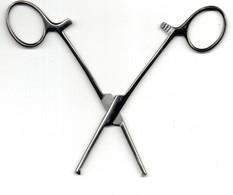 Ciseaux  Pince De Laboratoire Inox  L = 15 Cm - Medizinische Und Zahnmedizinische Geräte