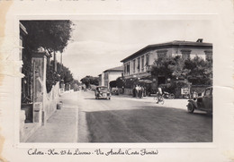 Toscana - Livorno - Rosignano Marittimo - Caletta - Via Aurelia - F. Grande - Viagg - Molto Bella - Livorno