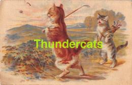 CPA CHAT CHATS GOLF SPORT CAT CATS WOUNO - Katten