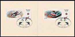 DUOSTAMP/MY STAMP** - Carnet / Boekje - Souvenir - Bouvreuil / Goudvink / Gimpel / Bullfinch / Pyrrhula Pyrrhula - BUZIN - Private Stamps