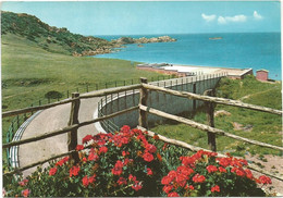 A5524 Santa Teresa Di Gallura (Sassari) - Panorama Parziale - Fiori Fleurs Flowers / Viaggiata 1967 - Other Cities