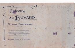 BUVARD - CHICOREE AU BUVARD - Coffee & Tea