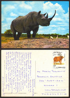 Somalia RHINOCEROS Nice Stamp   #33135 - Somalia