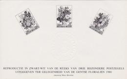 ZNP13 / NL - 1981 - OPB / COB 1966-68 - Hojas Blanco & Negro