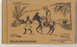Afrique  Occidentales Carnet De 12 CPA Collection Coloniale - Autres