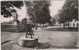 D81 - LESCURE - LA GRANDE PLACE - Monument - Pompe - CPSM Dentelée Petit Format En Noir Et Blanc - Lescure