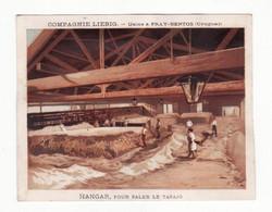 Chromo  LIEBIG   Hangar Pour Saler Le Tasajo - Liebig