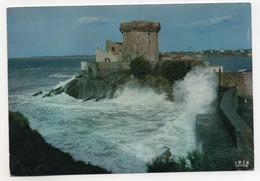 CIBOURE - Saint Jean De Luz - Le Fort - CD 3 - Vierge - Tbe - Ciboure
