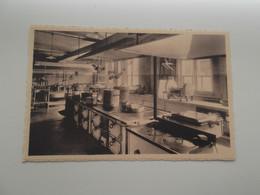 BUIZINGEN: Sanatorium Roos Der Koningin - Keuken - Other