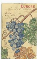 PHILATELIE / EUROPE (Grappe De Raisin Faite De Timbres De Plusieurs Pays/ G.F. Bernheim, Chaux-de-fonds) - Stamps (pictures)