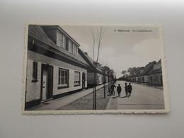 RIJKEVORSEL: Nr 12 - De Loozehofstraat - Rijkevorsel