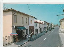 FERRARA - LAGOSANTO - VIA SPINA........TH14 - Ferrara