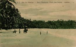 SÃO TOMÉ E PRINCIPE - Ilha Do Principe - Roça Paciencia - Praia Dos Burros - Sao Tome And Principe