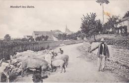 3007  44 Mondorf Les Bains (entrée Du Village + Berger)  1920 - Mondorf-les-Bains