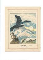 AIGLE Aviation 1911 Course Paris-Madrid Protège-cahier Couverture 220 X 175 TB 3 Scans - Book Covers