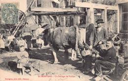 58 - En Morvan - AGRICULTURE -  Métiers - Un Ferrage De Vache-  (A-144 ) Voir Scan Recto Verso - Zonder Classificatie