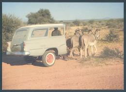 Botswana Rural Ingenuity - Botswana