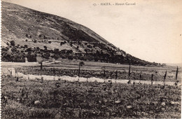 HAIFA - Mount Carmel - Israel