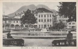 BELLUNO - PIAZZA CAMPITELLO E FONTANA - Belluno