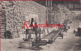 Willebroek Willebroeck ASED Usines - Ammoniak Fabrieken Ammoniaque Synthétique & Dérivés (In Zeer Goede Staat) - Willebroek