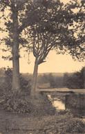 GENCK - Ruisseau Du Kuilon - Genk