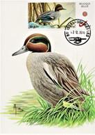 """Maximumkaart  """"Wintertaling"""" Met MyStamp Wintertaling - 1985-.. Birds (Buzin)"""