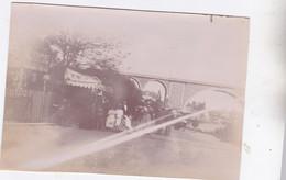 Photo  Albuminée 1896 Nogent Sur Marne Vue Du Viaduc Et Boutique Horticulteur & Fleuriste Taffet Réf 4881 - Luoghi