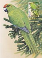 Australia 2009 Species At Risk - Norfolk Green Parrot Maximum Card - Cartes-Maximum (CM)