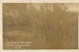 CARTE PHOTO DIE BEUTE DER RATTENJAGD IN EINER ARGONNE LA CHASSE AUS RATS FELDPOST 1916 - Guerre 1914-18