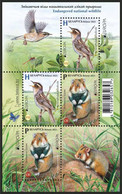 Belarus 2021 - EUROPA. Endangered Wildlife. Fauna Bird Vogel Uccello Oiseau Hamster Weißrussland/Wit-Rusland/Bielorussia - Unclassified