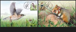 Belarus 2021 - EUROPA Endangered Wildlife. Fauna Bird Vogel Uccello Oiseau Hamster Weißrussland/Wit-Rusland/Bielorussia - Unclassified
