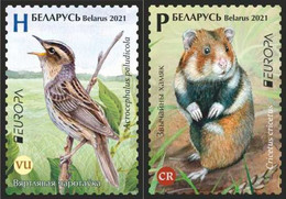 Belarus 2021 - EUROPA. Endangered Wildlife. Fauna Bird Vogel Uccello Oiseau Hamster Weißrussland/Wit-Rusland/Bielorussia - Belarus