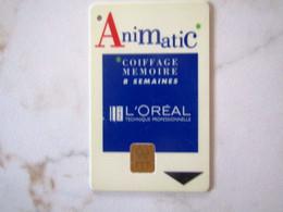 DEMO OU CARTE A PUCE   L OREAL - Exhibition Cards