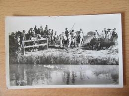 Aigues-Mortes N°33 - Les Taureaux Fuyant Le Passage Du Canal - Carte-photo Animée (cavaliers) - L. Roisin - Aigues-Mortes