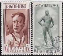 Belgie   .   OBP  .    785/786     .   O     .   Gebruikt   .  /  .   Oblitéré - Used Stamps