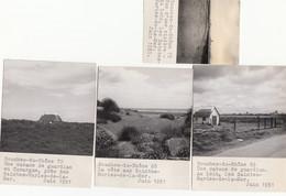 Saintes-Maries-de-la-Mer 13 - Cabane De Guardian - La Côte - Rizière - 4 Photographies 1951 - Saintes Maries De La Mer