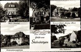 CPA Steinbergen Rinteln An Der Weser, Haus Am Walde, Am Bahnhof, Haus Kneipp Und Sonneck, Heim - Other